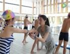 徐州牛佳惠专业游泳培训 双证 女教练 经验丰富