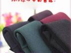 冬季 七彩棉驼绒一体裤加厚不倒踩脚义乌打底裤时尚韩国版批发