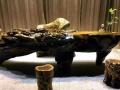 缅甸金丝楠木根雕茶桌树桩原木茶桌茶海
