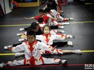 丰台少儿武术-少儿散打培训班-刘家窑地铁站附近