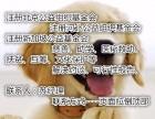 北京办理的公益基金会原始资金是800万吗