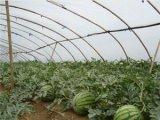 西瓜膜新农塑料厂专业供应-优质反光膜