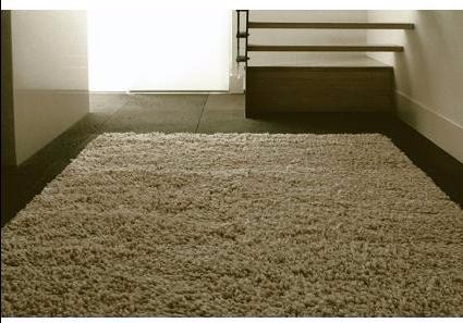 北京清洗地毯公司,北京专业清洗地毯,北京沙发清洗公司,