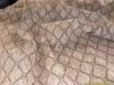 雪尼尔提花布 色织大提花 沙发面料 坐垫布