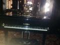 九成新展示钢琴转让