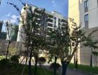 南通海安 宏和珈都 现房出售 房源体量大 总价低