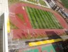 四川甘孜州新国标塑胶跑道材料厂家施工报价达州学校跑道球场工程