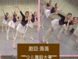 佳莉舞蹈 中国舞,芭蕾舞,特长生艺考
