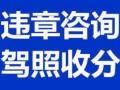 上海收闲置到期驾驶分数