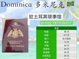 干货  外交护照拥有些特权