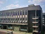 出租九龙坡周边厂房 500平方米起出租