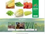 农副产品种植企业网站制作,蔬菜水果农场网站定制