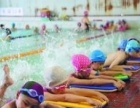 天津unique优尼克游泳精英团队陪训班