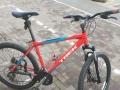 去年购置的自行车