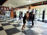 学习拳击自由搏击 散打武术 来沈阳格斗空间