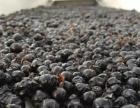 福海冰谷北冰红葡萄酒 冰红葡萄酒 冰葡萄酒