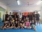 济南武运金龙搏击散打防身术专业培训机构格斗培训