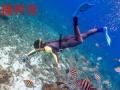 水下相机潜水相机出租租赁 海岛游、浮潜、潜水必备