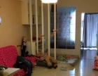 五一中路 大利嘉城附近 独门独户单身公寓 家具齐全 拎包入住