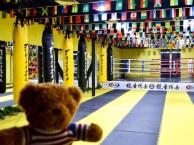 北京市拳击少儿武术散打培训班哪里好龍圣搏击俱乐部万达店