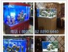 家庭鱼缸,龙鱼鱼缸,隔断鱼缸,屏风鱼缸,公司鱼缸