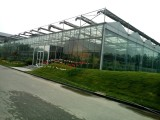 生態溫實 休閑觀光溫室 生態餐廳 溫室維修