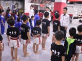 北京市海淀区综合格斗MMA培训班-综合格斗MMA培训俱乐部
