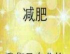 赵多燕减肥加盟火爆招商中!