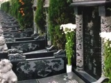 白塔山公墓 大朗陵园 味江陵园 成都西门墓地价格大全