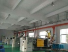 虎门北栅900平方米带地坪漆单一层厂房招租