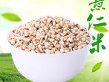 优质东北薏米批发五谷杂粮薏仁米工厂直销支