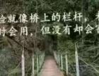 中国人寿茂名分公司