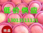 今日山东红富士苹果批发价格
