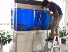 深圳布吉附近上门清洗鱼缸