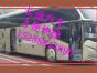 乐清到德州的客车 大巴车 时刻表(15258847890)快