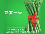 北京大棚番茄种子批发市场价格