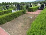 官廳中華永久陵園免費上門接送看墓