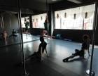 专业培训爵士钢管舞蹈,现火热招生中!
