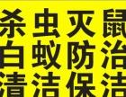 清溪消杀公司 洒店灭鼠 餐厅灭鼠 写字楼灭四害
