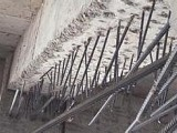 房屋碳纤维加固 粘钢 植筋加固北京专业打孔植筋