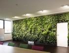 南山科技园仿真植物墙 公司logo植物墙 绿植造型墙