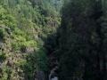 汤旺河到茅兰沟 专线