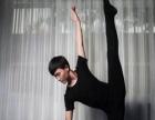 邯郸舞协主席亲授特长艺考集训,成人 专业舞蹈培训