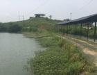 出租璧山120亩生态园