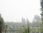 黑龙江七台河市新兴区30亩农用地出租