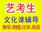 青州中考艺术生文化课辅导
