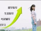 专业日语培训,一对一定制教学,日语家教,承接翻译