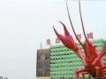潜江生态龙虾城商铺开发商直售 火热龙虾产业投资无忧