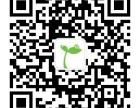 武汉网络视频自媒体策划,新媒体建设及运营管理